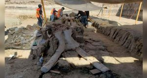 En predio de Santa Lucia, hallan restos arqueológicos y de mamuts