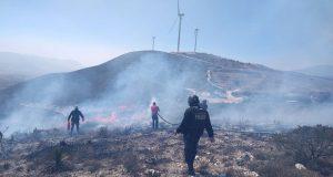Comuna de Cañada Morelos sofoca incendio forestal en La Herradura