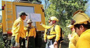 Conafor apertura 569 km de brechas contra incendios forestales