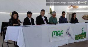 ONG se pronuncia contra construcción de plaza de toros; atenta contra animales