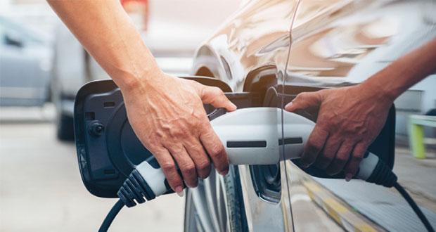 Plantea el Verde que micros y vehículos oficiales sean eléctricos