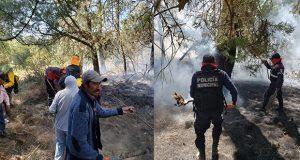 En Zautla se queman 100 hectáreas de siembra debido a incendio