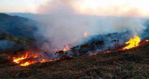 Con 17 casos en enero, bajan 51% incendios forestales en Puebla