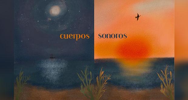 """""""Cuerpos sonoros"""", una experiencia del poder sensible de la música"""