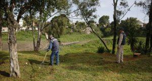 Ayuntamiento seguirá dando mantenimiento a áreas verdes