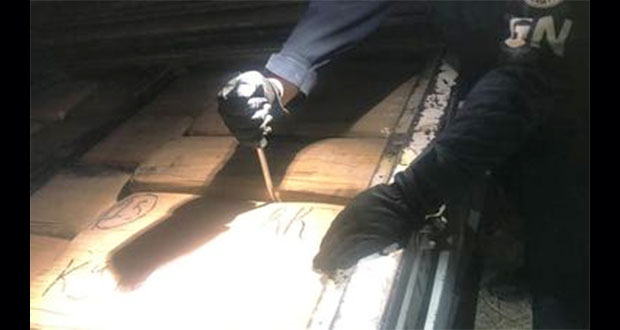 GN asegura cargamento de 1.6 toneladas de mariguana en Guanajuato