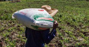 Agricultura y Guerrero van por asegurar entrega de fertilizantes