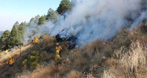Suman 32 incendios activos en 11 estados; nueve, en áreas protegidas