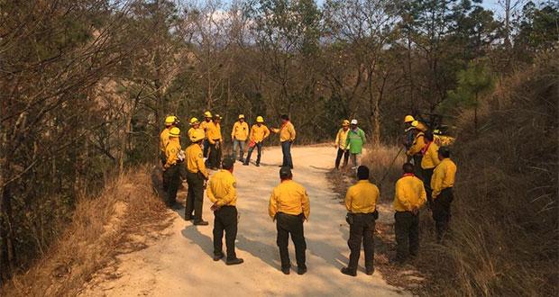 Conafor combate 29 incendios forestales activos en México