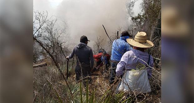 Puebla registra más de 150 incendios forestales durante 2020: Segob
