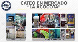 Tras cateo en La Acocota, FGE detiene a 3 y asegura especies protegidas