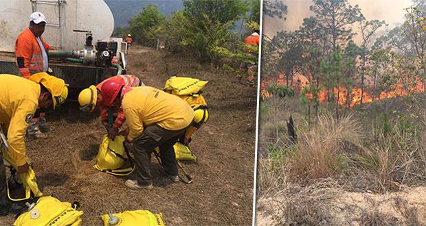 Activos 37 incendios forestales; auxilian 1,022 combatientes
