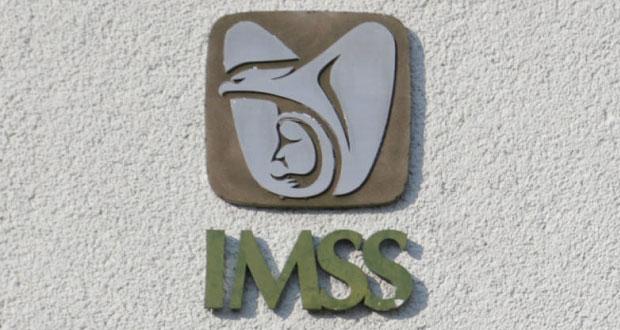Por vía remota, registros y pagos de incapacidades maternas del IMSS