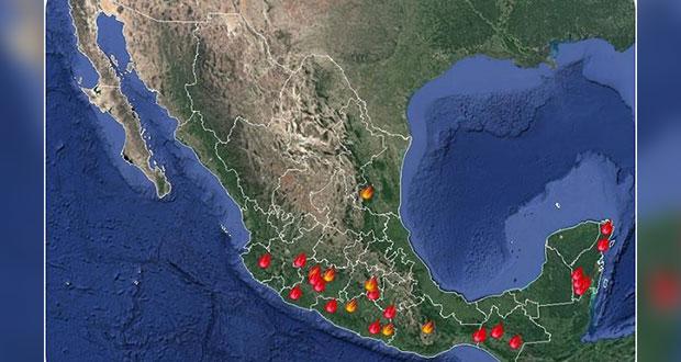 Liquidan 13 y siguen activos 31 incendios forestales en 10 estados