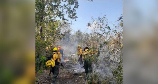 En México, se registran 86 incendios forestales activos