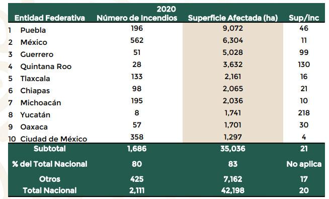 Con 9 mil hectáreas dañadas por incendios forestales, Puebla es 1er lugar