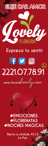 floreria-lovely