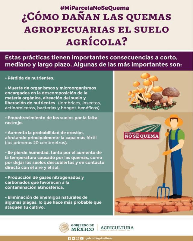 """Con """"Mi parcela no se quema"""", buscan promover agricultura sostenible"""