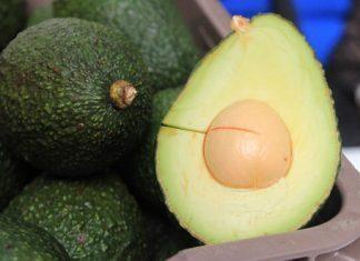 Productores agrícolas de Puebla podrán acceder a apoyos de la SDR