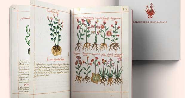 ¿Te gusta la Historia? Mira el códice herbolario más antiguo de México