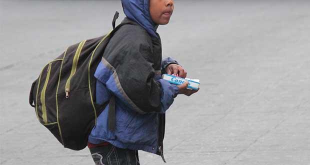 Ciudadanos podrán denunciar trabajo infantil en calles y cruceros