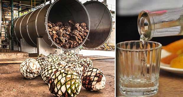 Tequila Don Ramon quiere poner destiladora de mezcal en Puebla