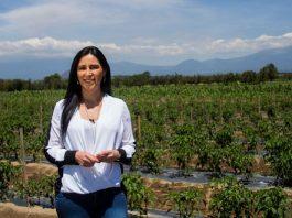 Fabiana Briseño, nueva delegada especial de la CIT en Puebla