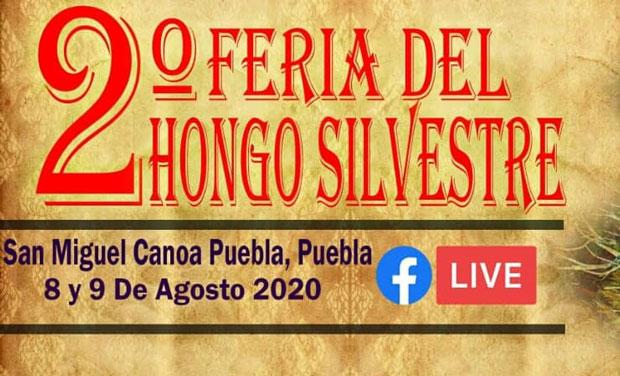 Pese a semáforo rojo, poblanos organizan fiesta y Feria en Canoa