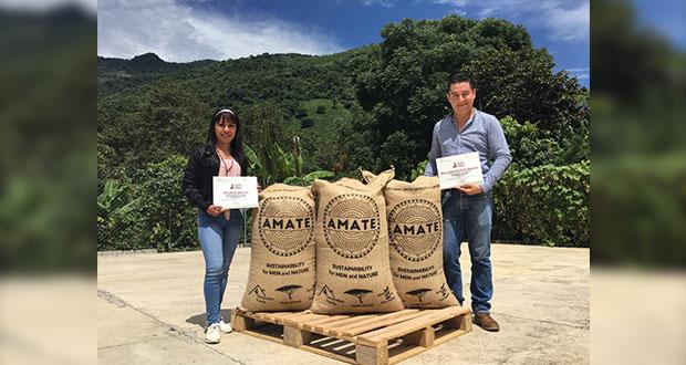 Exportan café de la Sierra Norte de Puebla a Alemania