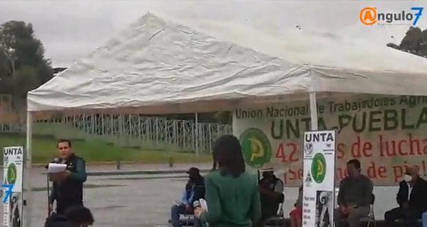 UNTA pide agilizar trámites de apoyos al campo y ampliar cobertura