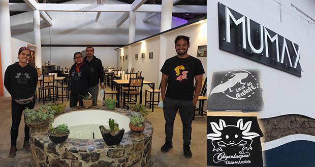 Museo Mexicano del Axolote abre sus puertas en Chignahuapan