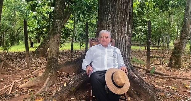 """México Libre, sin registro por recurso opacos; """"triunfo del pueblo"""": AMLO"""