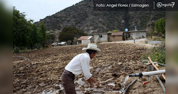 Acuerdan fomentar regulación y conservación de núcleos agrarios