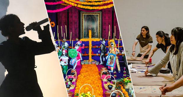 """Festival """"La mes un sueño"""" será virtual; habrá conciertos y talleres"""