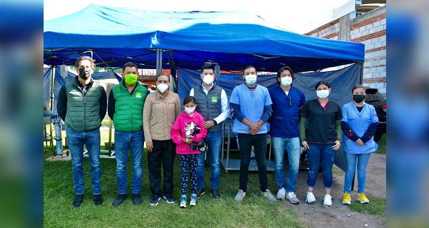 Hace Partido Verde jornadas de esterilización en San Pedro Cholula