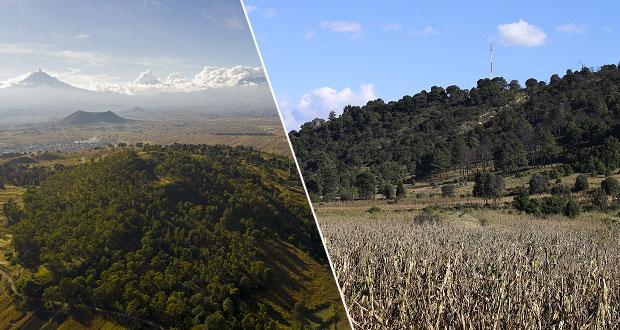 Medio Ambiente y VW van por rehabilitación del cerro Zapotecas
