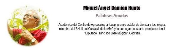 biografia-miguelangeldamianhuato