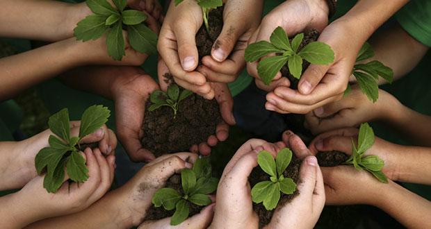 Semarnat lanza herramienta para promover la educación ambiental