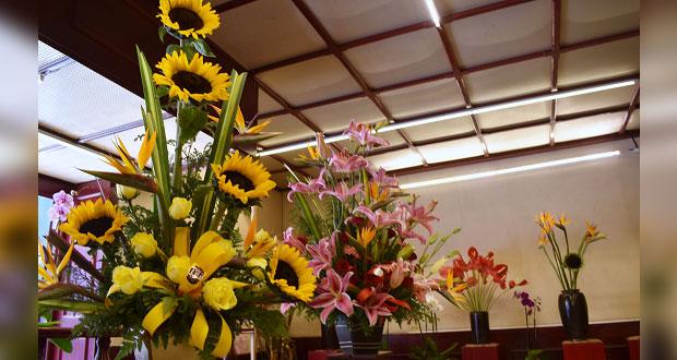 En pandemia, flores y plantas ayudan al estado emocional