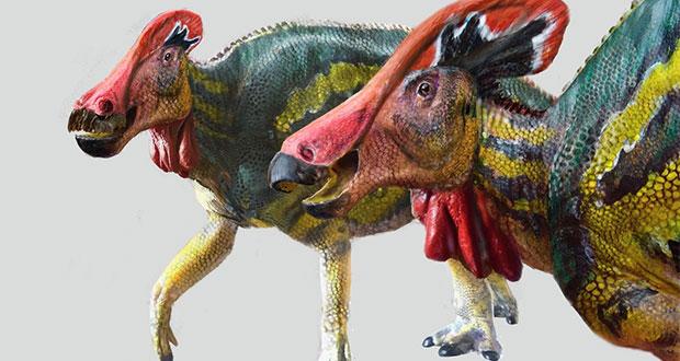Descubren nueva especie de dinosaurio en Coahuila