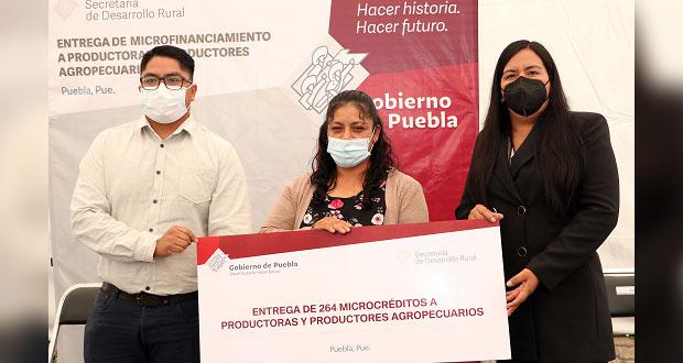 Entrega Desarrollo Rural 264 microcréditos a productores poblanos