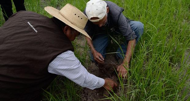 Sader y Conacyt colaboran para aprovechar agua en zonas áridas