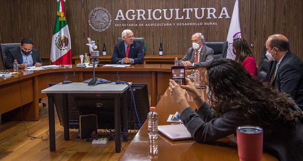 Con sede de congreso mundial, México impulsará industria vitivinícola