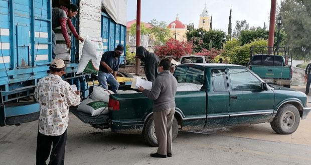 En Tepexi, apoyan a 936 campesinos con fertilizante subsidiado