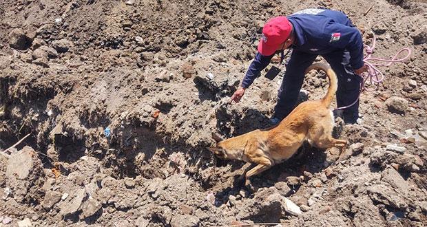 Joven muere sepultado por alud de tierra en Cuautlancingo