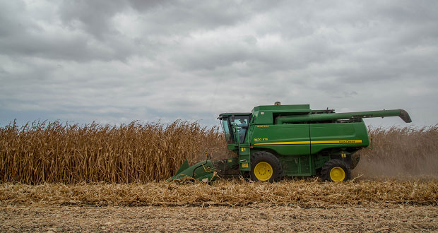 México implementa métodos de cultivo agroecológicos: Sader