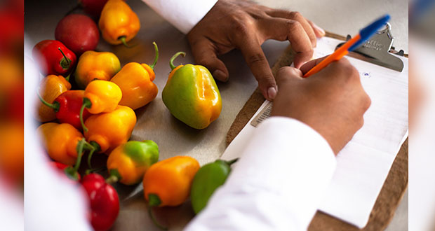¿Eres productor agropecuario? Notifica a Senasica de enfermedades