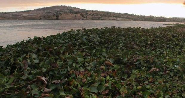 Conagua denunciará desborde de lago artificial en Valle de Bravo