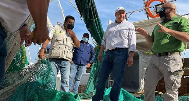 Federación supervisa excluidores de tortugas marinas en Tampico