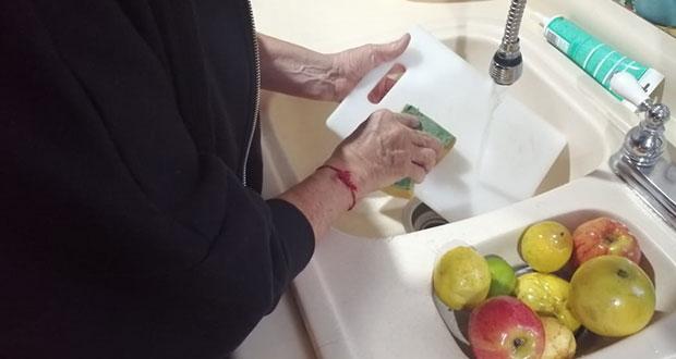 No olvides limpiar y guardar en lugares frescos tus alimentos: IMSS